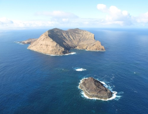 MC01: Montaña Clara-Roque del Este